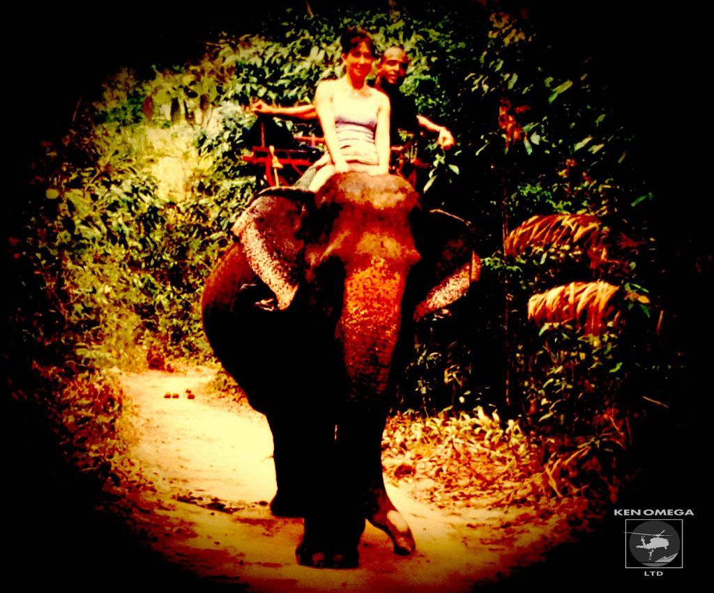 kenandfiona-elephant-comic3